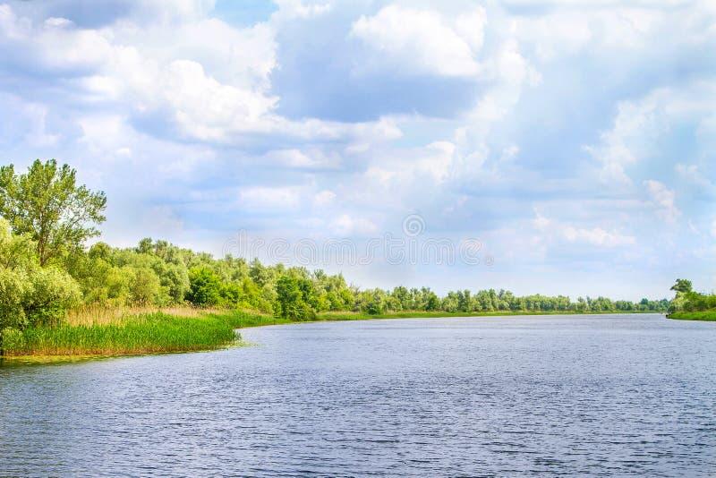 Болота и Kherson Dnieper реки ландшафта стоковые фото