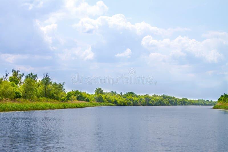 Болота и Kherson Dnieper реки ландшафта стоковая фотография rf