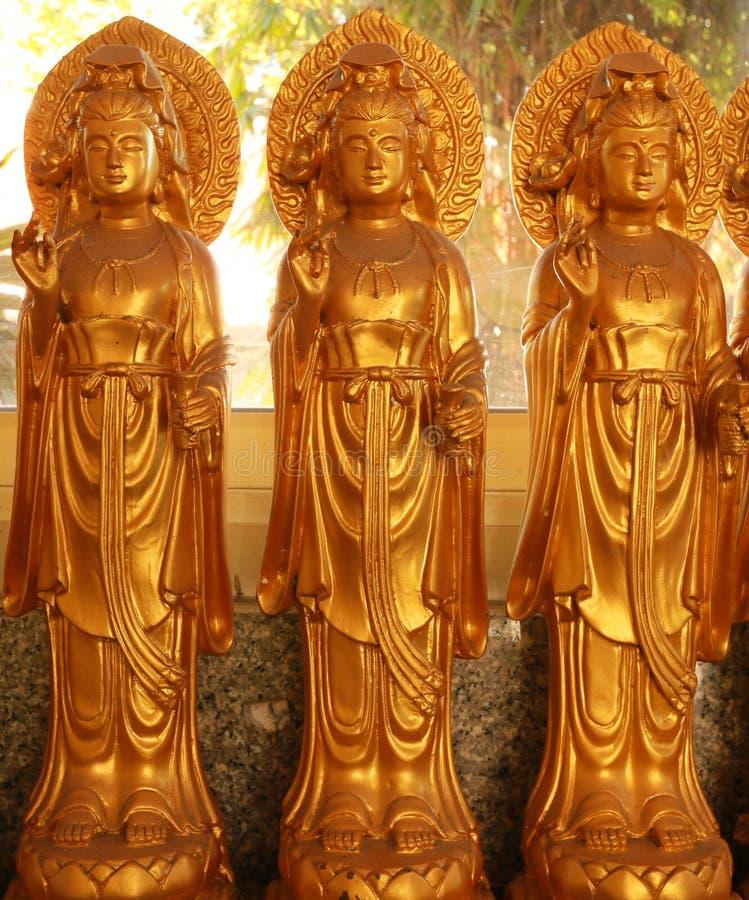 Бодхисаттва стоковая фотография rf