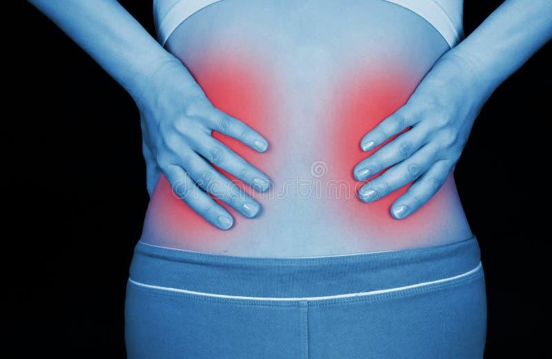 Больная почка, показанная красный цвет стоковые изображения