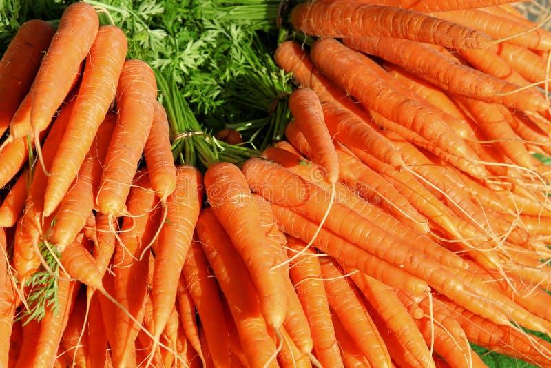 Download Большая группа в составе моркови Стоковое Фото - изображение насчитывающей vegetarian, vegan: 33733118
