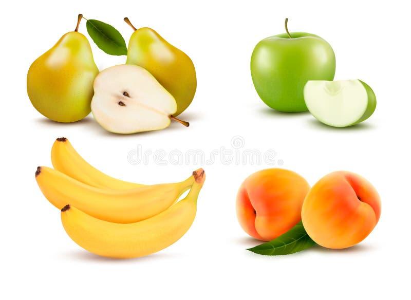 Большая группа в составе различный плодоовощ. бесплатная иллюстрация