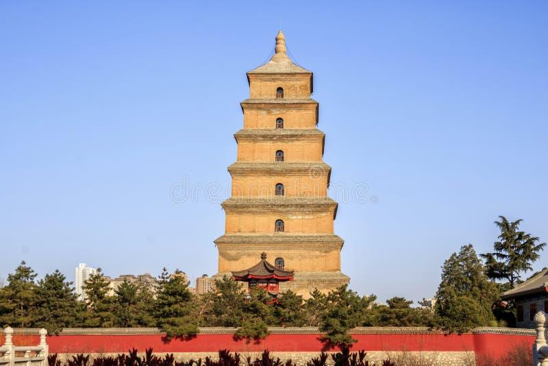 Большая одичалая пагода XI гусыни фарфора стоковое фото