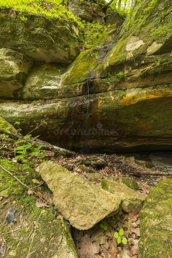 Большая пещера песка стоковые фото