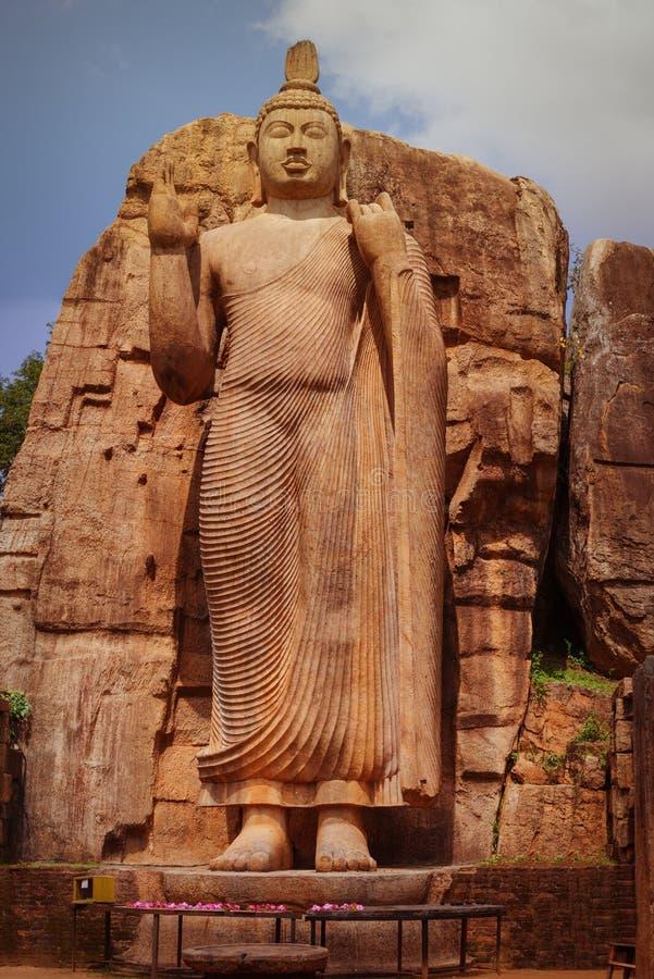 Большая статуя Будды высекаенная из утеса Шри-Ланка, Anuradhapura стоковое изображение rf