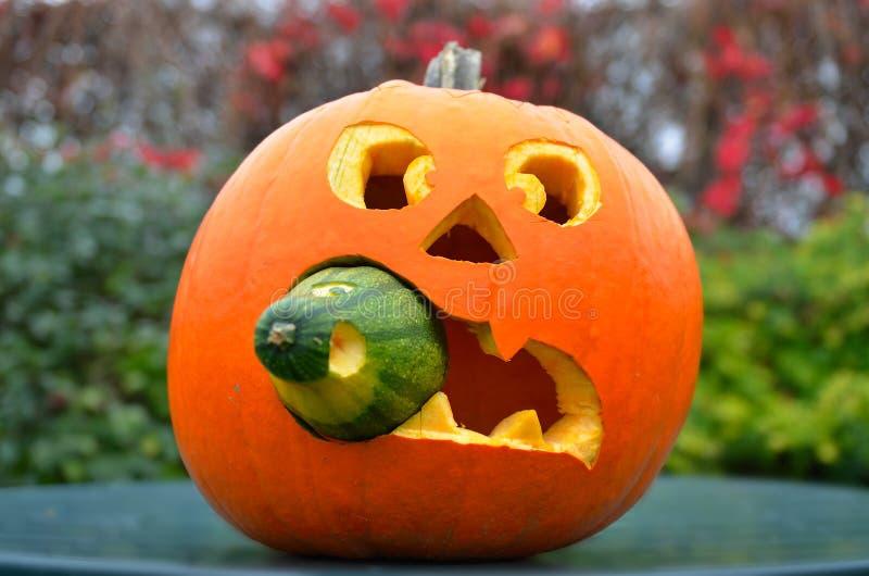 Большая тыква на хеллоуин стоковая фотография rf