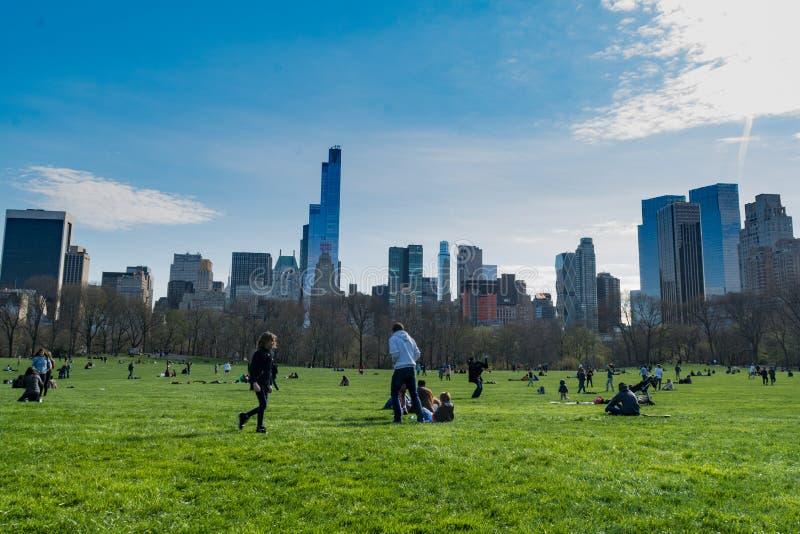Большая лужайка, Central Park, Нью-Йорк стоковая фотография rf