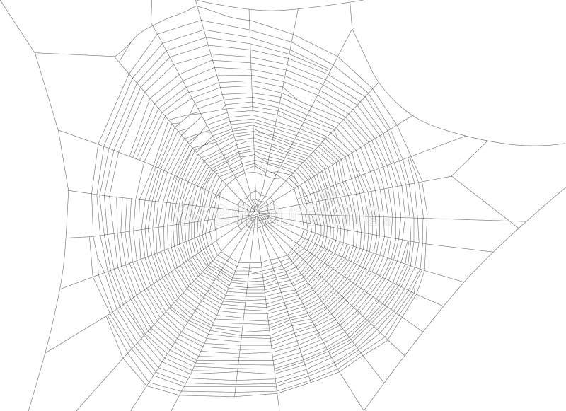 Большая черная иллюстрация сети паука иллюстрация вектора