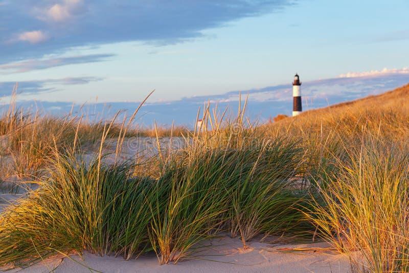 Большие маяк пункта соболя и трава дюны стоковые изображения