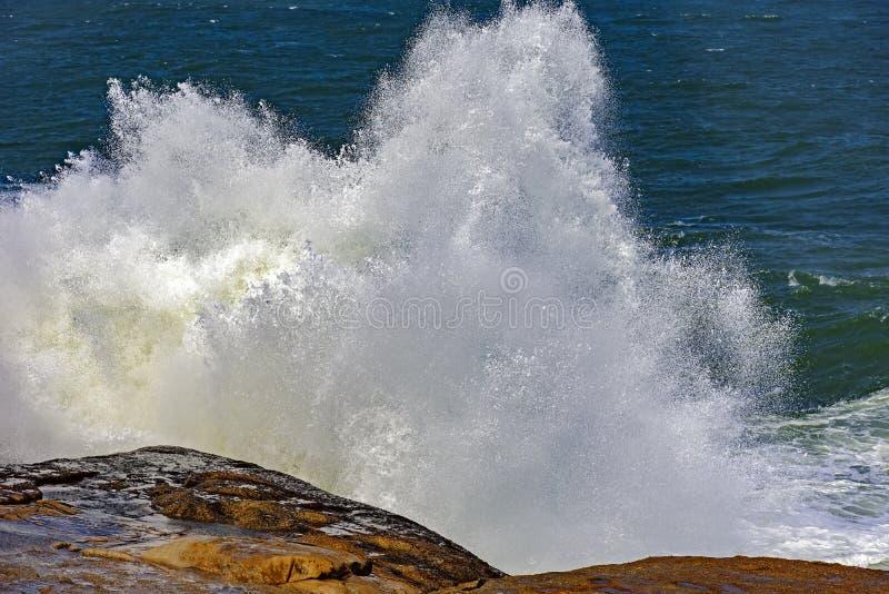 Большие, опасные волны во время тропического шторма стоковое фото