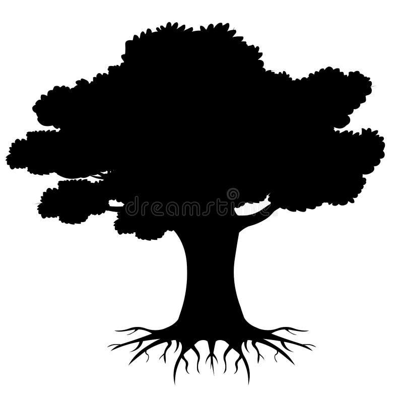 Большое дерево укореняет силуэт с корнями Иллюстрация ...