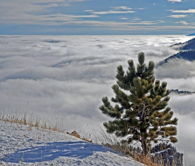 Большое море гор рожка облаков стоковое фото