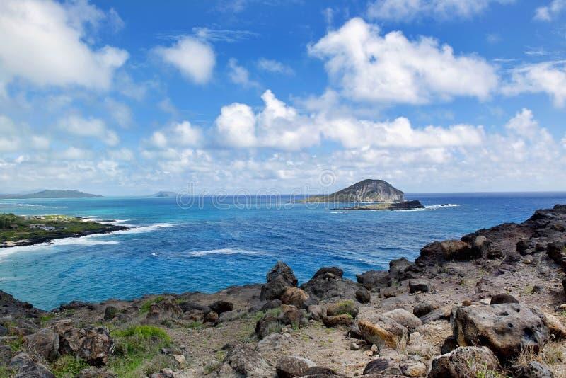 Большое Plue Гаваи стоковые фото