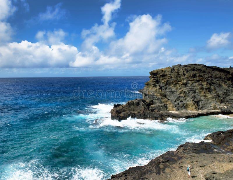 Большое Plue Гаваи стоковые изображения