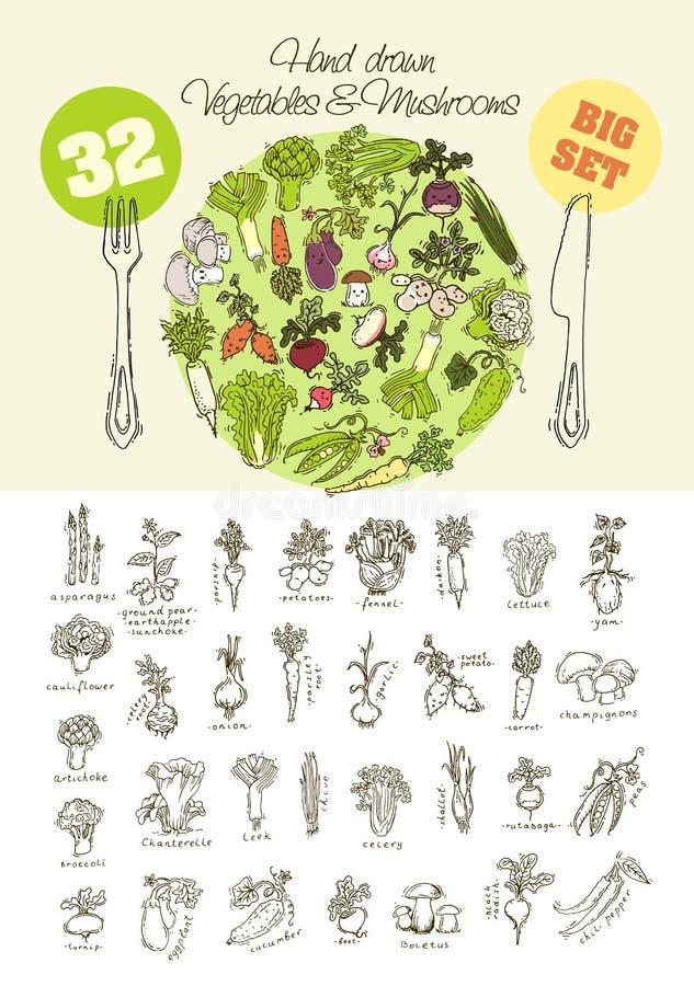 Большой комплект овощей нарисованных рукой иллюстрация штока