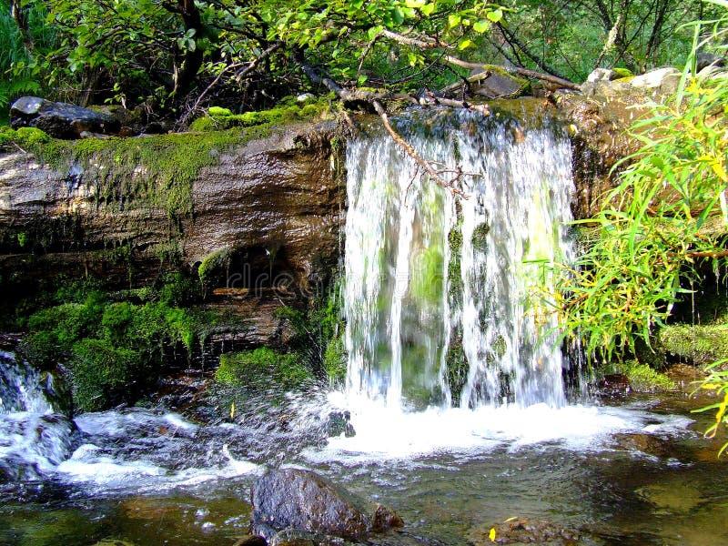 Большой красивый водопад на реке стоковая фотография rf