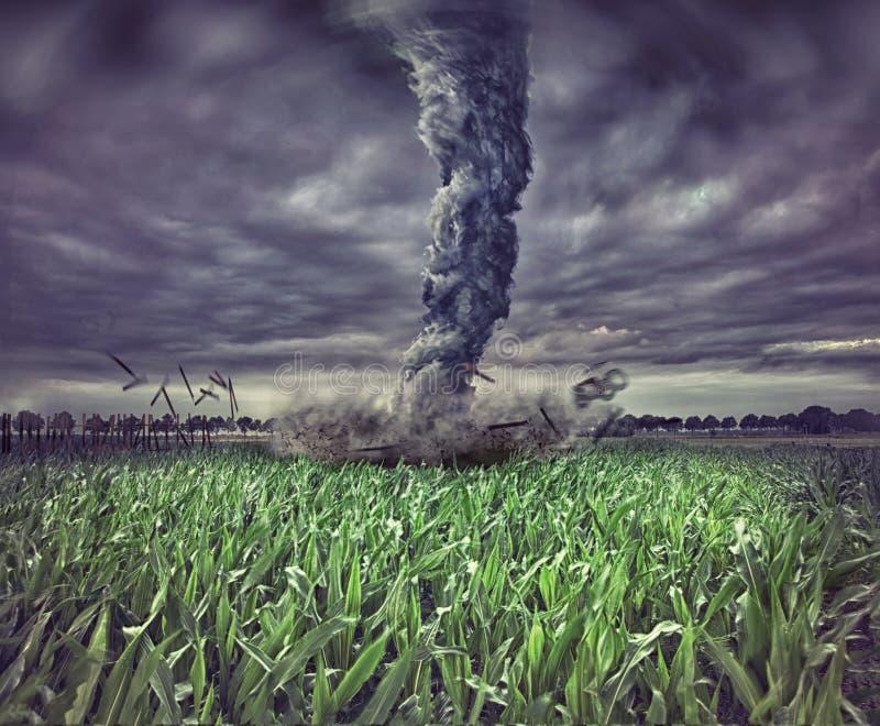 Большой торнадо стоковые изображения