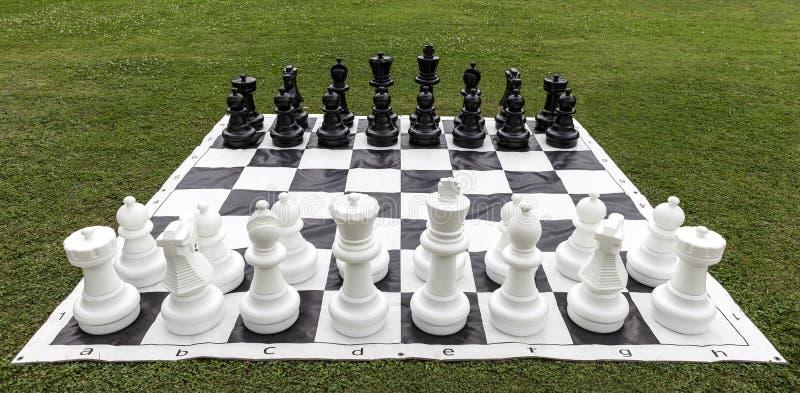 Большой шахмат на траве сада стоковое фото
