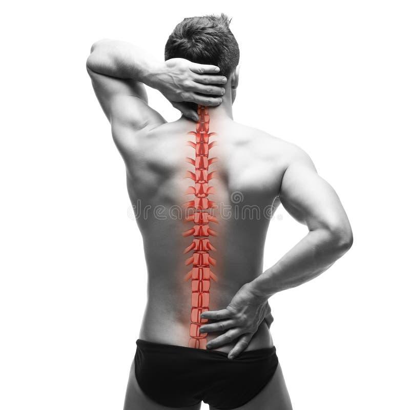 Боль позвоночника, человек с backache и боль в шеи, черно-белое фото с красным костяком стоковые фото