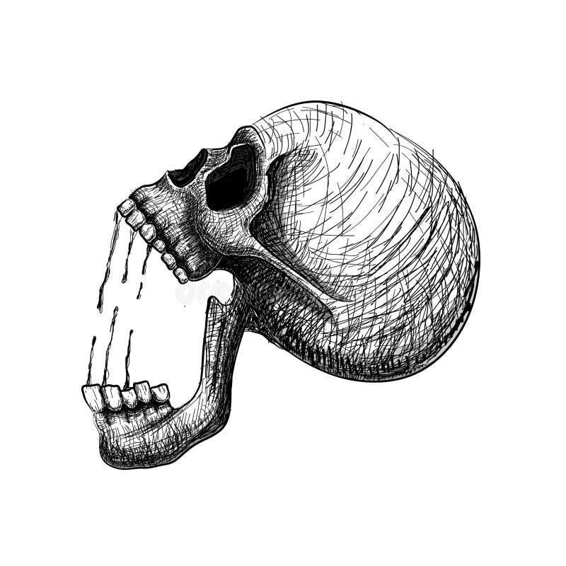 Боль черепа Вручите линию череп притяжки искусства анатомически правильный человеческий иллюстрация вектора
