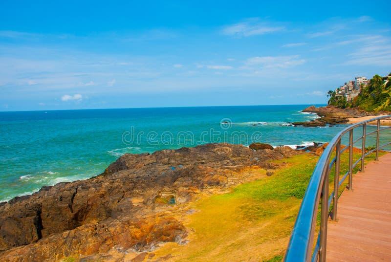Бразильский пляж с желтым песком и голубое море в солнечной погоде r Сальвадор Южная Америка стоковые изображения