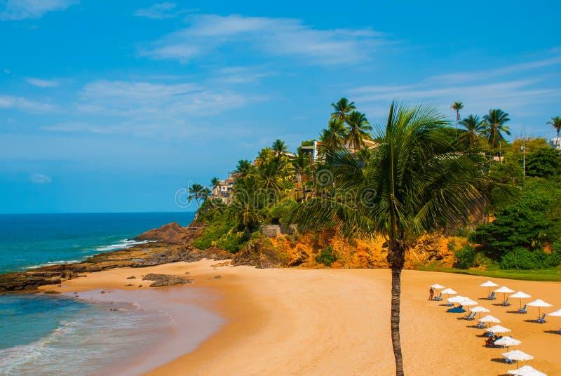 Бразильский пляж с желтым песком и голубое море в солнечной погоде r Сальвадор Южная Америка стоковая фотография rf