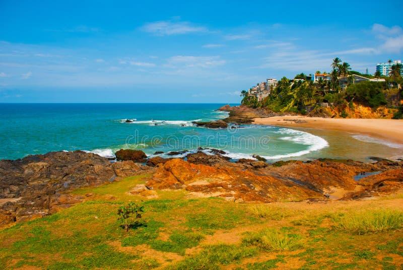 Бразильский пляж с желтым песком и голубое море в солнечной погоде r Сальвадор Южная Америка стоковое изображение
