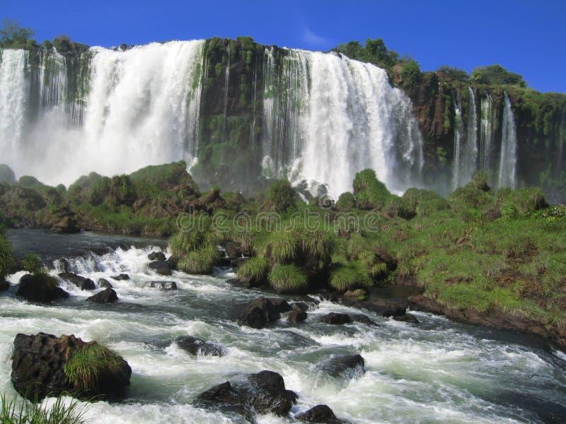бразильское iguacu стоковое изображение rf