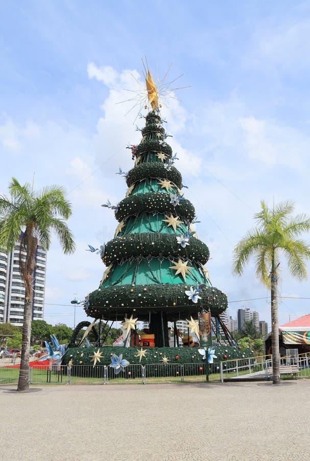 Бразилия, Манаус/Ponta Negra: Рождественская елка стоковые фото