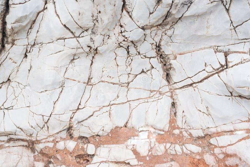 Брайн и белый мрамор стоковое фото rf