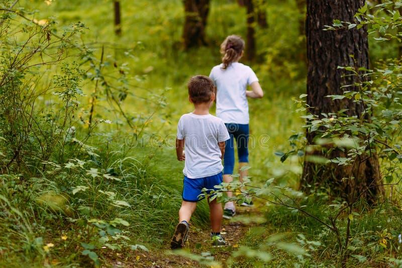 Брат и сестра в белых футболках идут в древесины на пути летом стоковые фотографии rf