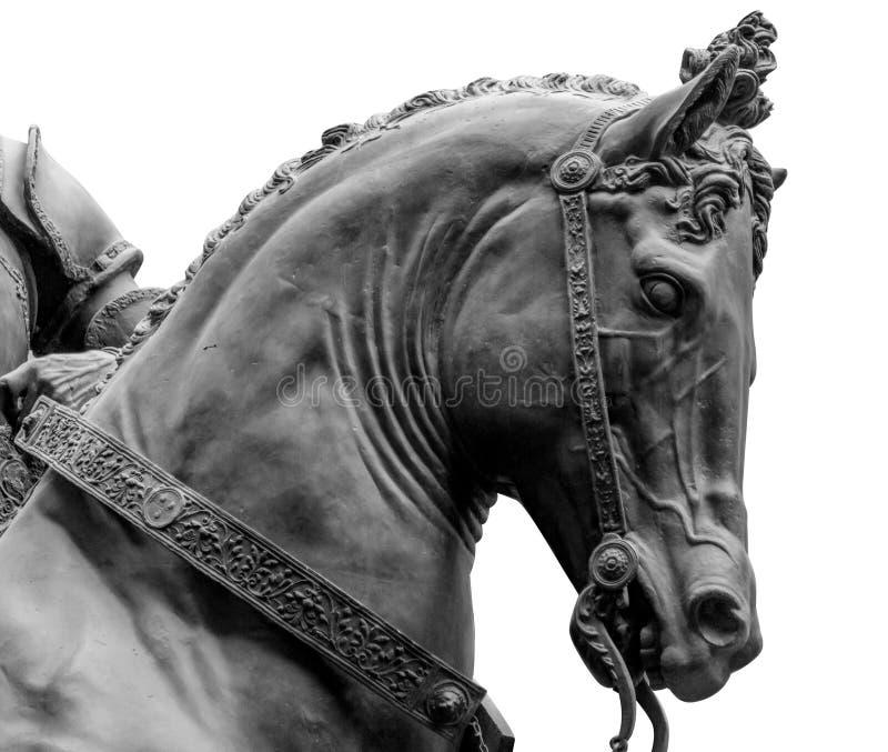Бронзовая голова лошади изолированная на белой предпосылке стоковая фотография rf
