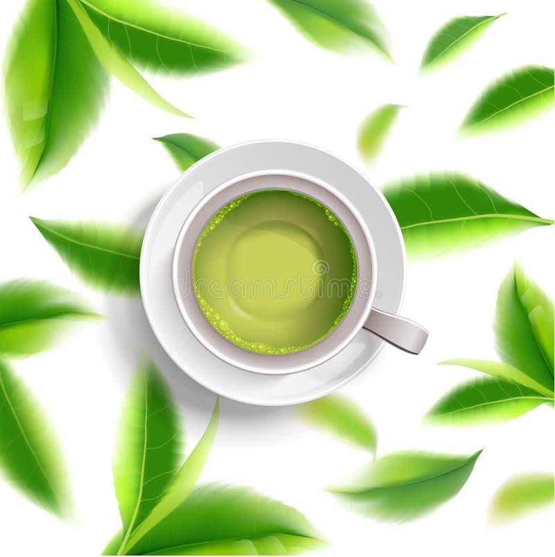 Брошюра чашки зеленого чая, знамя, выходит вектор бесплатная иллюстрация
