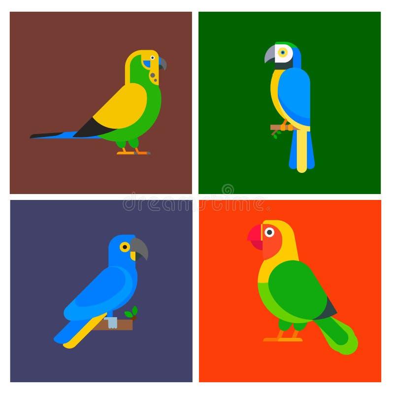 Брошюра flayer вида породы птиц попугаев животная бесплатная иллюстрация
