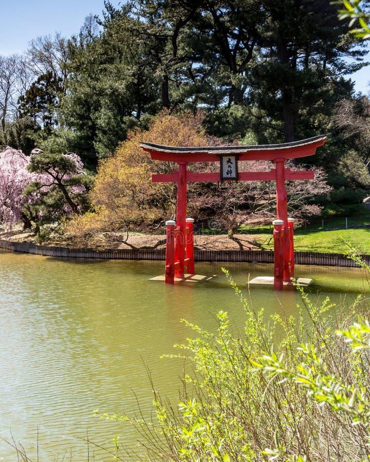 Бруклин NY/Соединенные Штаты - 17-ое апреля 2019: вертикальный взгляд мирного японского сада Холм-и-пруда Бруклина стоковое фото