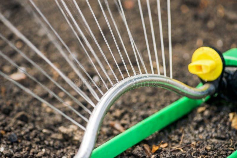 Брызга оросительной системы сада лужайка автоматического моча автоматический мочить спринклера стоковая фотография rf