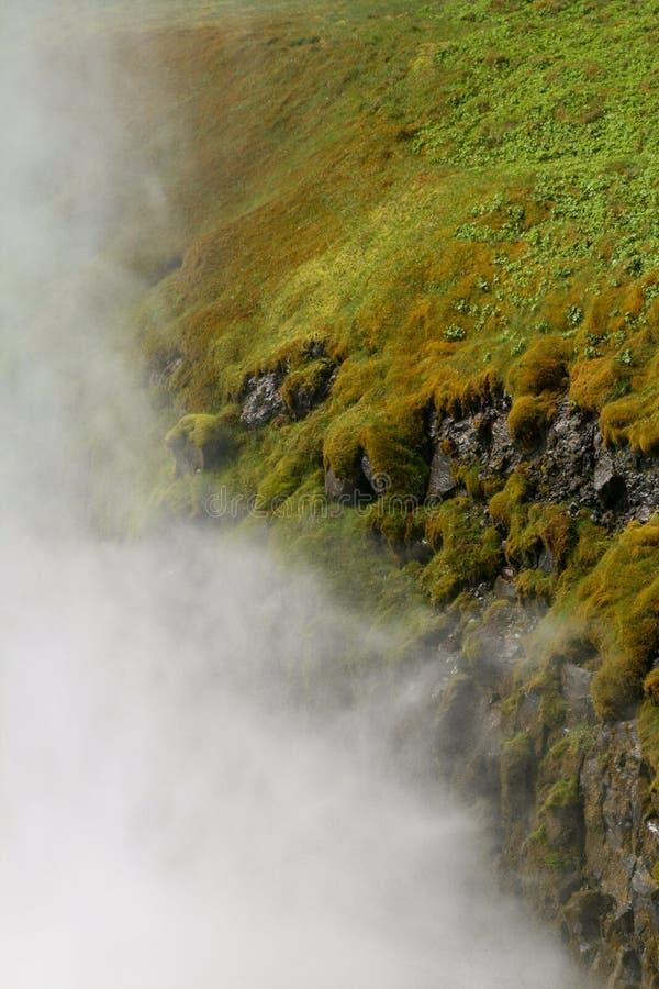 Брызги над травой стоковые изображения