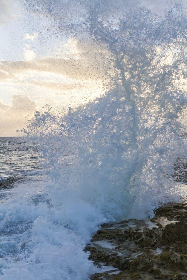 Брызг отверстия дуновения Grand Cayman стоковая фотография