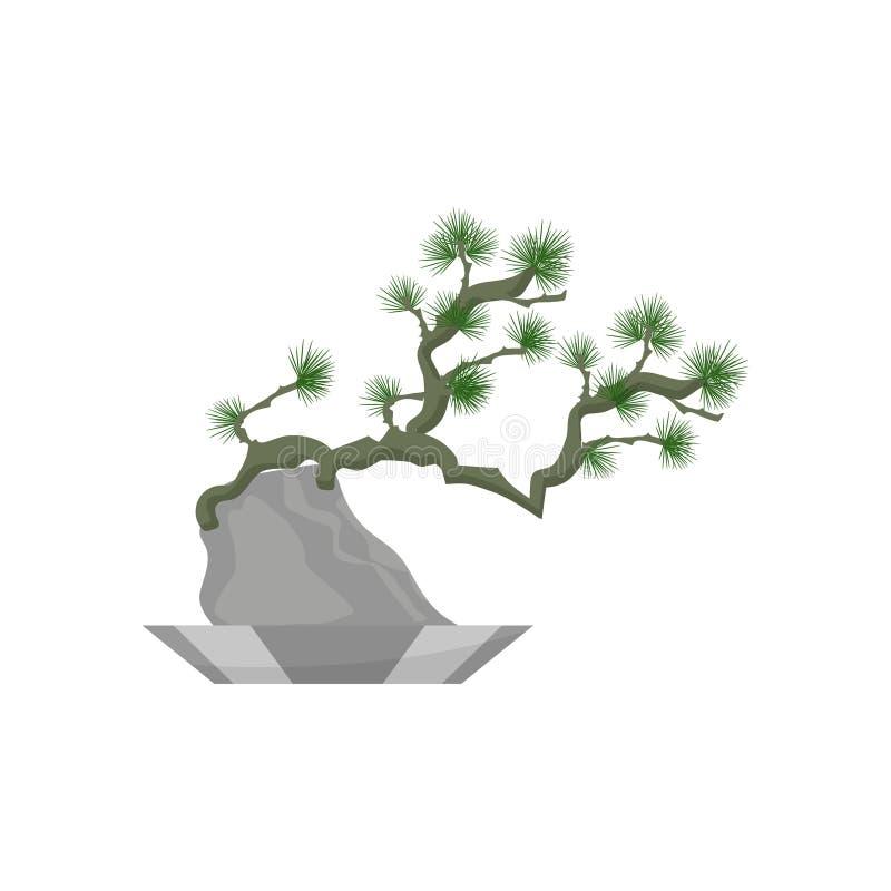 буг Значок завода дома реалистический для внутреннего художественного оформления Coniferous завод в цветочном горшке также вектор бесплатная иллюстрация