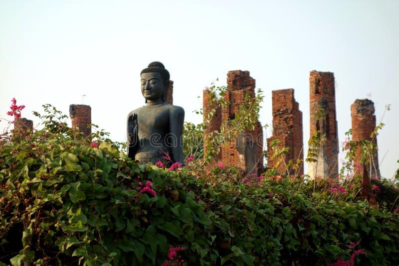 Буддийская статуя в цветочном саде искупанном в свете стоковая фотография rf