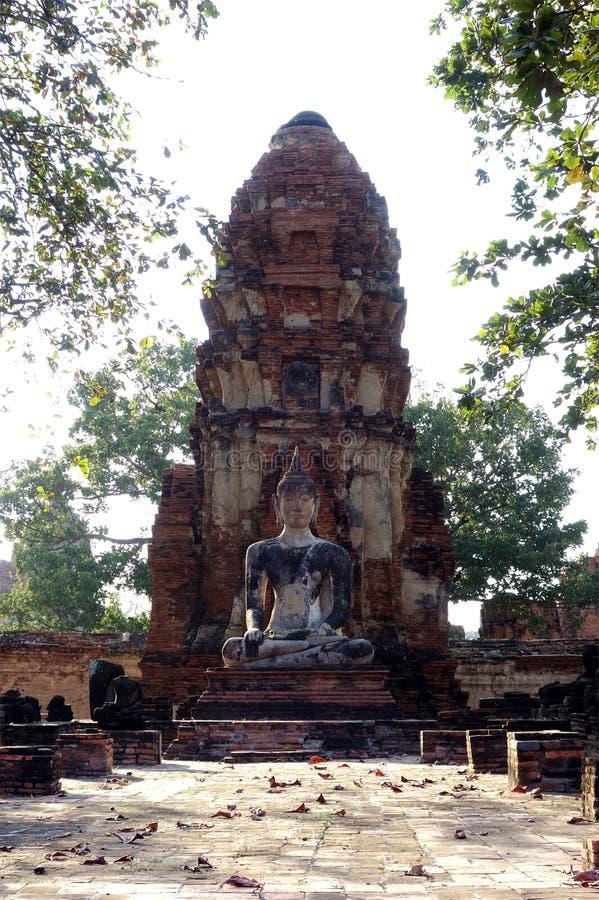 Буддийская статуя искупанная в свете стоковые фотографии rf