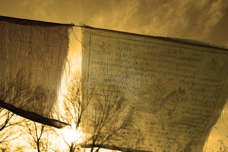 Буддийская тибетская молитва сигнализирует развевать в ветре против голубого неба стоковые фото