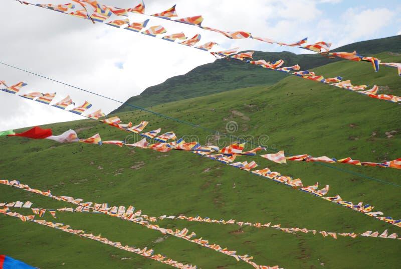 буддийский сценарий флагов стоковое фото