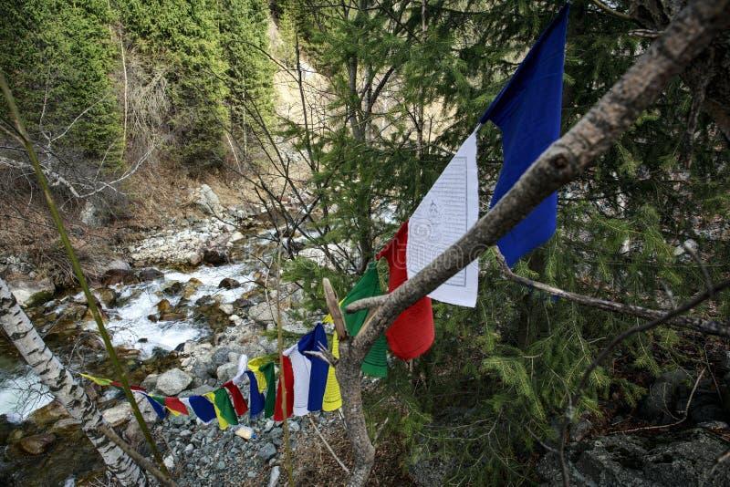 буддист flags молитва стоковые изображения