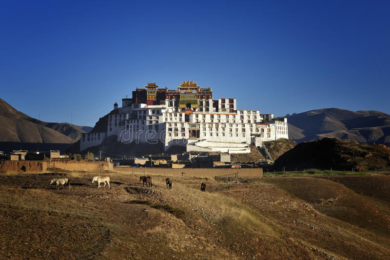 будизм Тибет академии стоковые фотографии rf