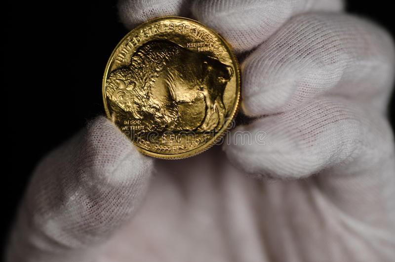Буйвол золота Соединенных Штатов ручной стоковое фото