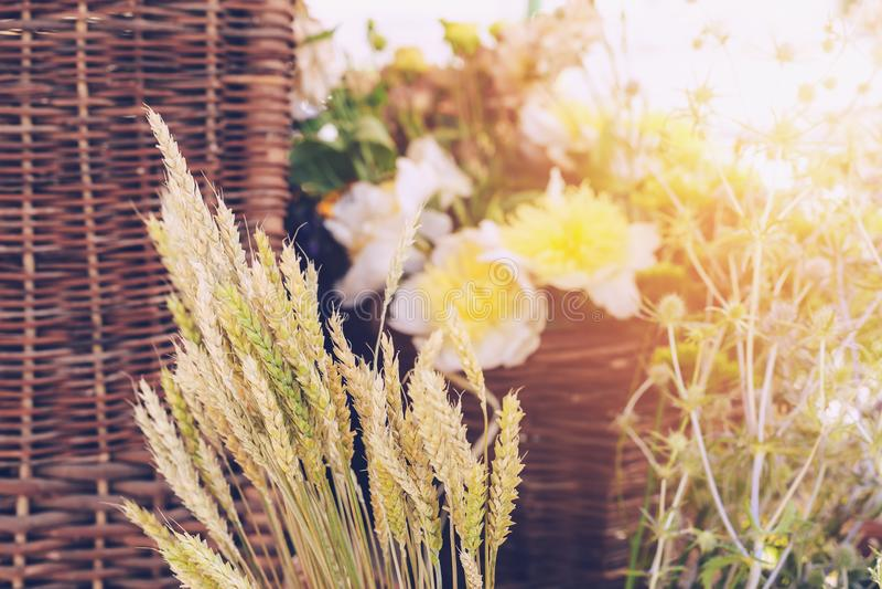 Букеты полевых цветков стоковое изображение