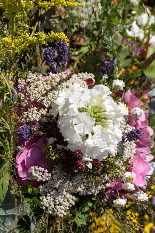 букеты цветков и трав стоковое изображение