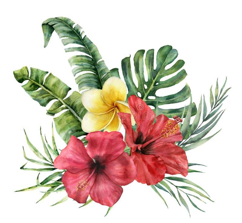 Букет акварели тропический с яркими цветками Вручите покрашенный кокос, листья банана, monstera, plumeria, гибискус бесплатная иллюстрация