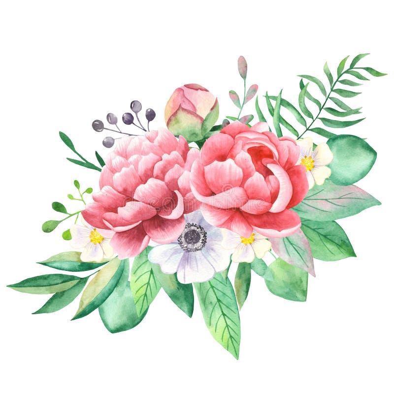 Букет акварели цветков пионов, ветрениц, pansies иллюстрация вектора
